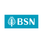 BSN New Logo Vector