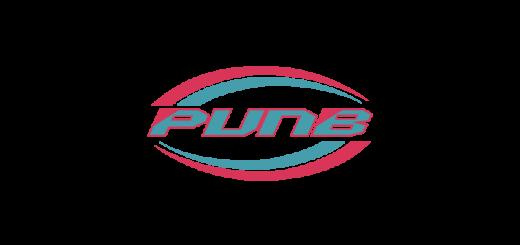 PUNB-Vector-Logo