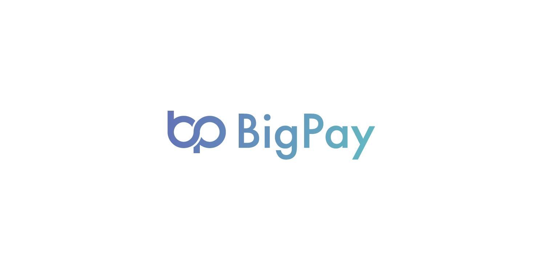 bigpay logo vector