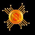 Bitcoin Virtual Coin Vector